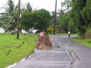 椰子の葉を運ぶ現地の女性